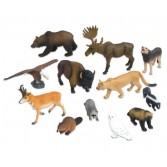 Animale realistice din America de Nord – 12 piese